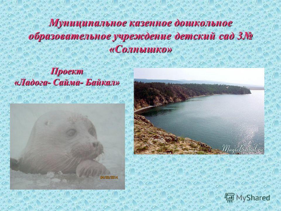 Муниципальное казенное дошкольное образовательное учреждение детский сад 3 «Солнышко» Проект «Ладога- Сайма- Байкал»