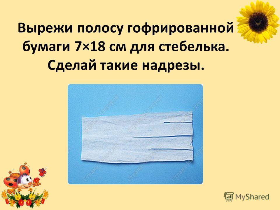 Вырежи полосу гофрированной бумаги 7×18 см для стебелька. Сделай такие надрезы.
