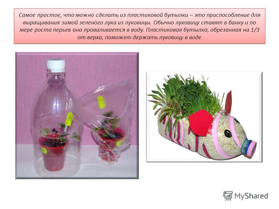 Cамое простое, что можно сделать из пластиковой бутылки – это приспособление для выращивания зимой зеленого лука из луковицы. Обычно луковицу ставят в банку и по мере роста перьев она проваливается в воду. Пластиковая бутылка, обрезанная на 1/3 от ве