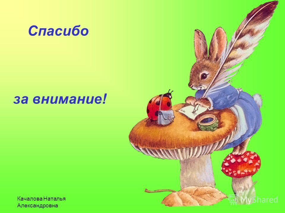 Качалова Наталья Александровна Спасибо за внимание!