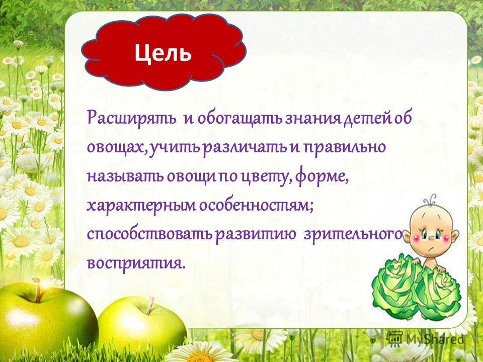 Расширять и обогащать знания детей об овощах, учить различать и правильно называть овощи по цвету, форме, характерным особенностям; способствовать развитию зрительного восприятия. Цель
