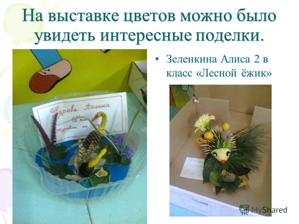 На выставке цветов можно было увидеть интересные поделки. Зеленкина Алиса 2 в класс «Лесной ёжик»