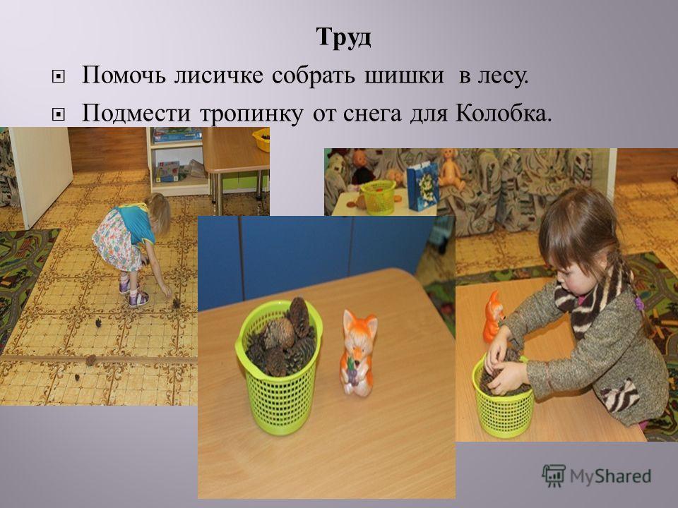 Труд Помочь лисичке собрать шишки в лесу. Подмести тропинку от снега для Колобка.