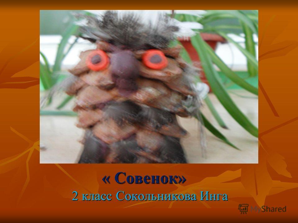 « Совенок» 2 класс Сокольникова Инга 2