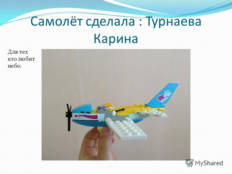 Самолёт сделала : Турнаева Карина Для тех кто любит небо.
