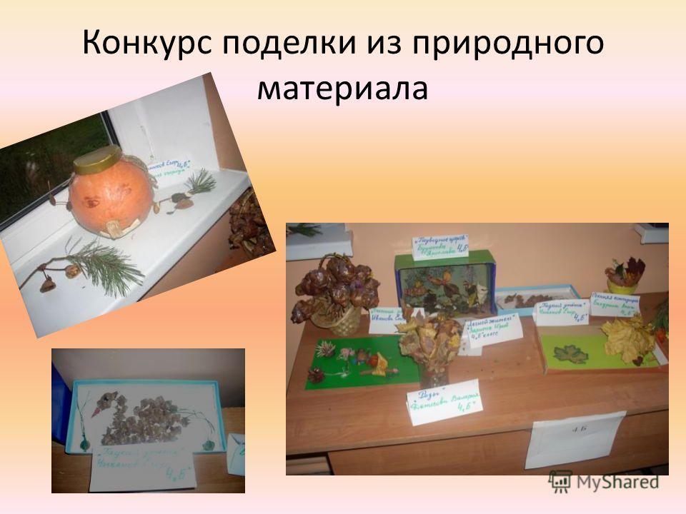 Конкурс поделки из природного материала