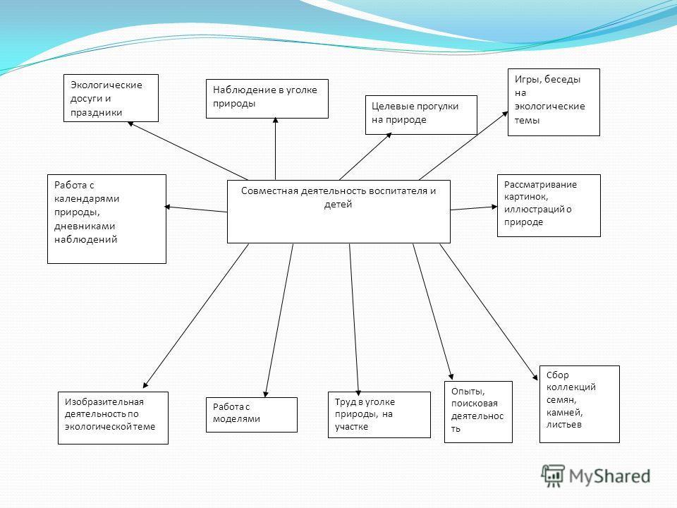 Презентация на тему Реферат Экологическое воспитание детей  5 Совместная деятельность воспитателя