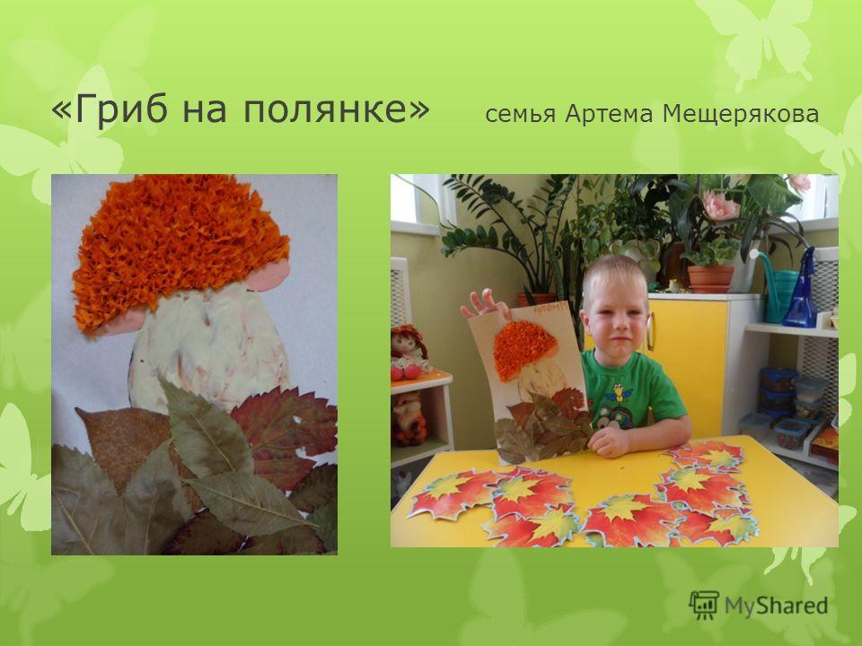 «Гриб на полянке» семья Артема Мещерякова