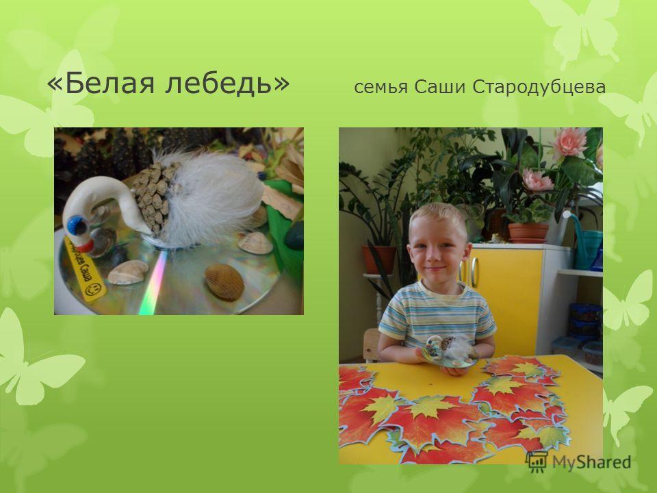 «Белая лебедь» семья Саши Стародубцева