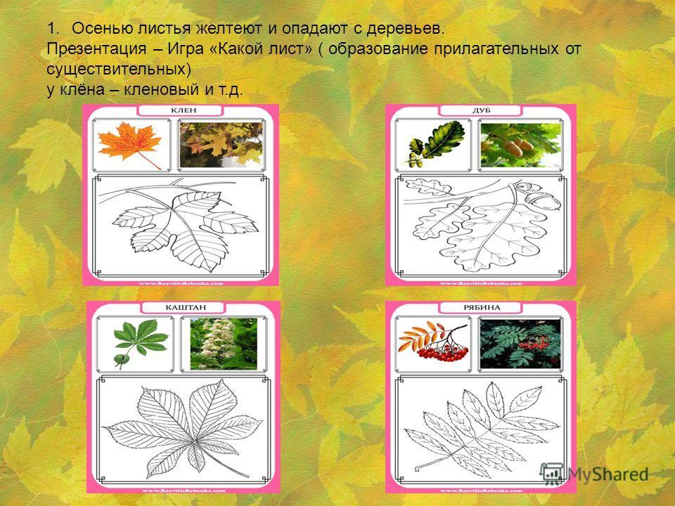 1. Осенью листья желтеют и опадают с деревьев. Презентация – Игра «Какой лист» ( образование прилагательных от существительных) у клёна – кленовый и т.д.