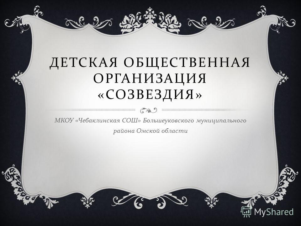 ДЕТСКАЯ ОБЩЕСТВЕННАЯ ОРГАНИЗАЦИЯ « СОЗВЕЗДИЯ » МКОУ « Чебаклинская СОШ » Большеуковского муниципального района Омской области