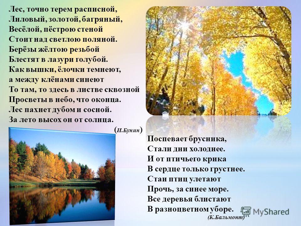 Лес, точно терем расписной, Лиловый, золотой, багряный, Весёлой, пёстрою стеной Стоит над светлою поляной. Берёзы жёлтою резьбой Блестят в лазури голубой. Как вышки, ёлочки темнеют, а между клёнами синеют То там, то здесь в листве сквозной Просветы в