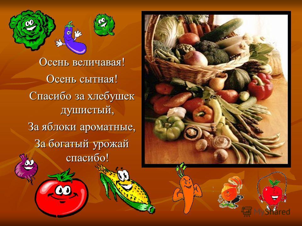 Осень величавая! Осень сытная! Спасибо за хлебушек душистый, За яблоки ароматные, За богатый урожай спасибо!