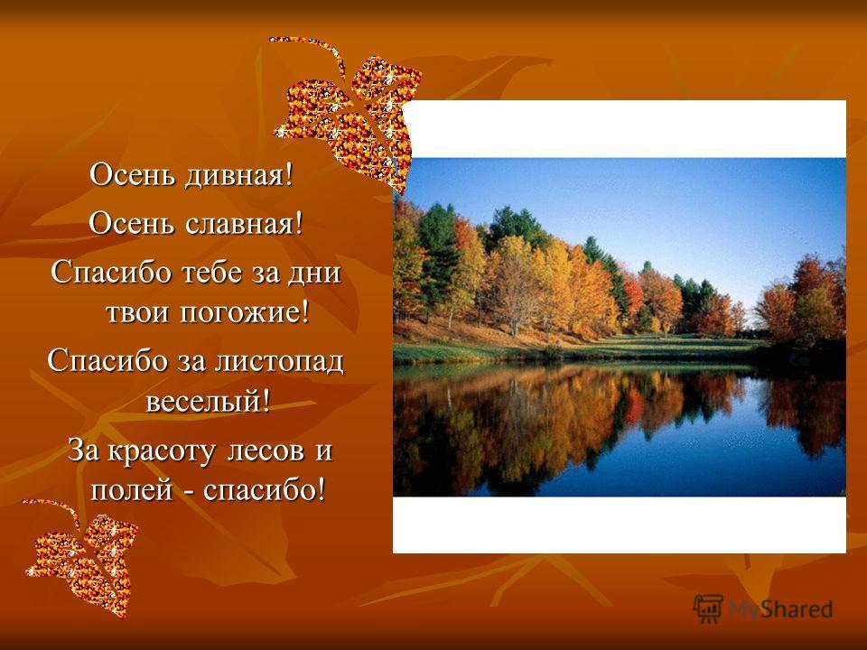 Осень дивная! Осень славная! Осень славная! Спасибо тебе за дни твои погожие! Спасибо тебе за дни твои погожие! Спасибо за листопад веселый! Спасибо за листопад веселый! За красоту лесов и полей - спасибо! За красоту лесов и полей - спасибо!