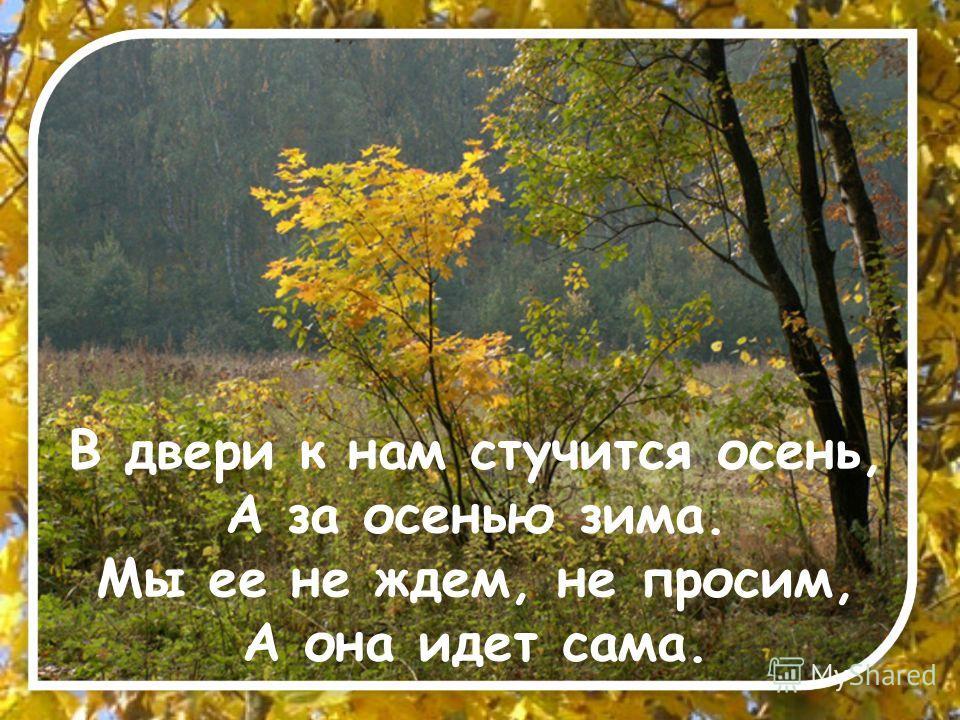В двери к нам стучится осень, А за осенью зима. Мы ее не ждем, не просим, А она идет сама.