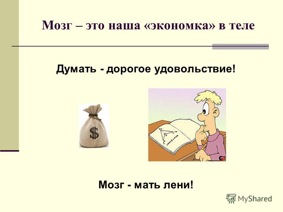 Мозг – это наша «экономка» в теле Думать - дорогое удовольствие! Мозг - мать лени!