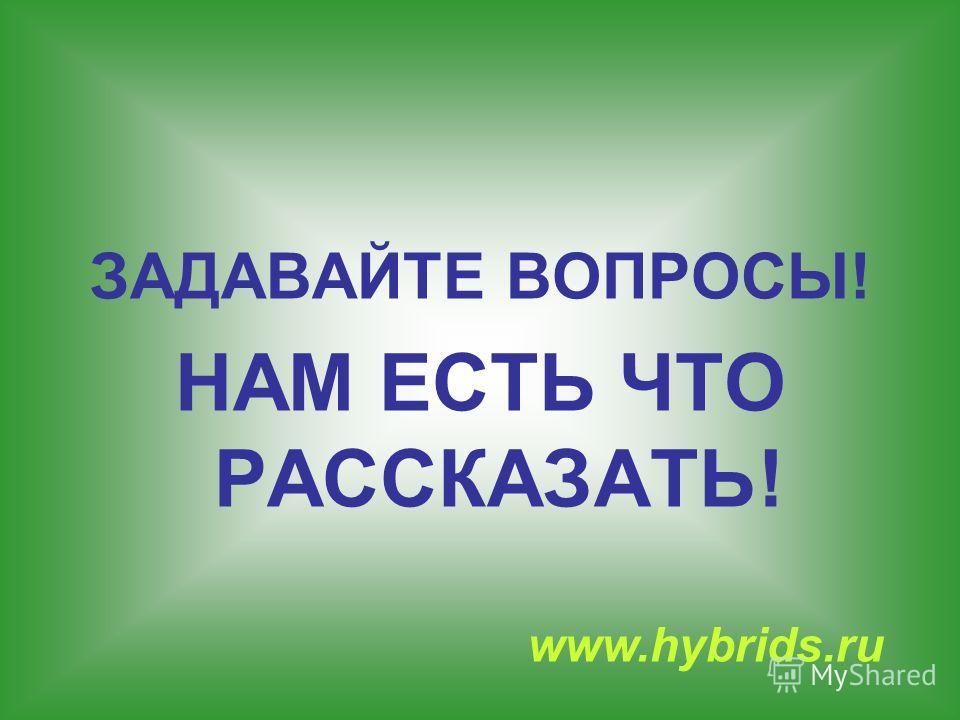 ЗАДАВАЙТЕ ВОПРОСЫ! НАМ ЕСТЬ ЧТО РАССКАЗАТЬ! www.hybrids.ru