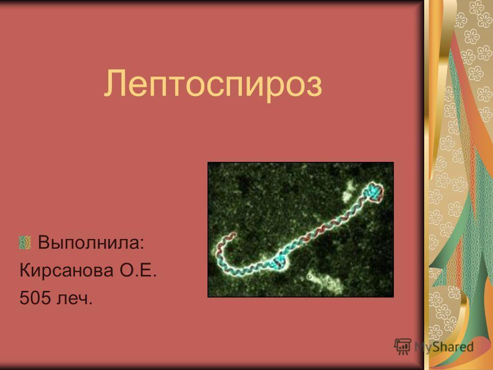 Лептоспироз Выполнила: Кирсанова О.Е. 505 леч.