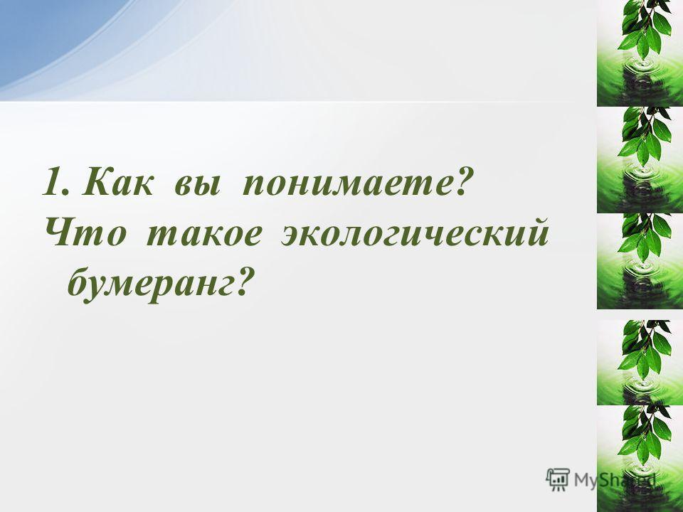 1. Как вы понимаете? Что такое экологический бумеранг?