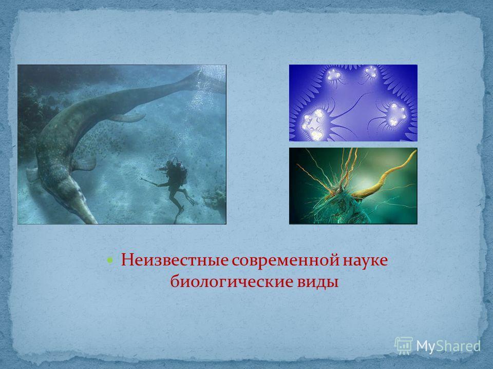 Неизвестные современной науке биологические виды