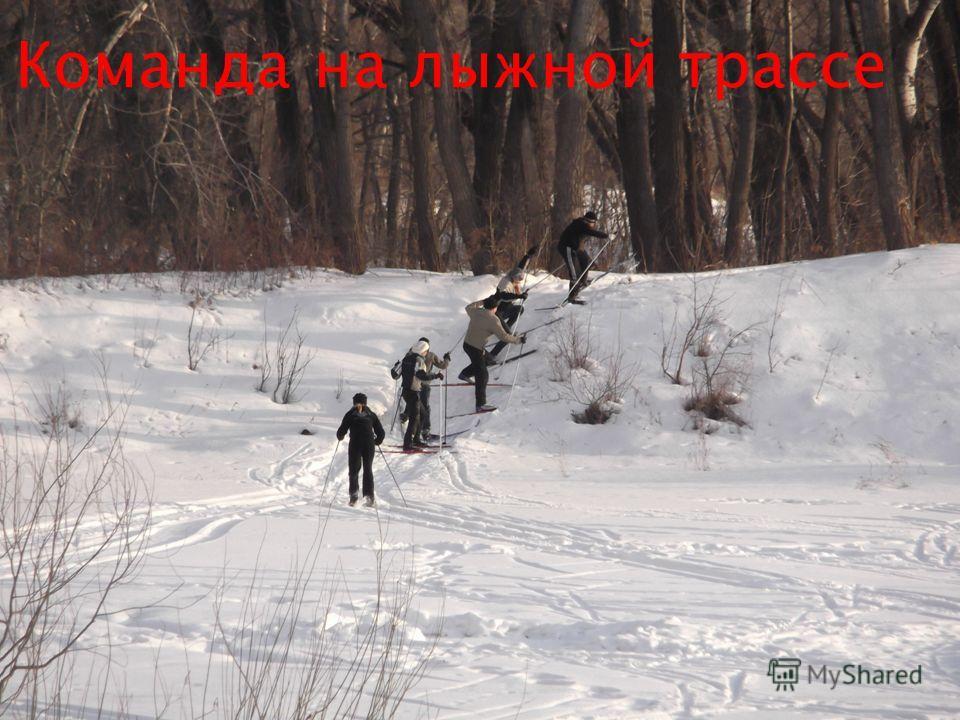 Команда на лыжной трассе