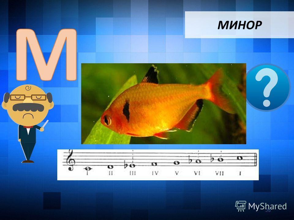 МИНОР 36