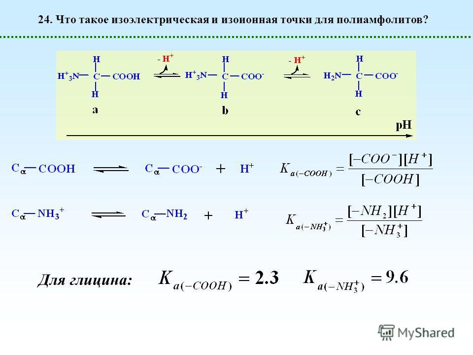 24. Что такое изоэлектрическая и изоионная точки для полиамфолитов? Для глицина: