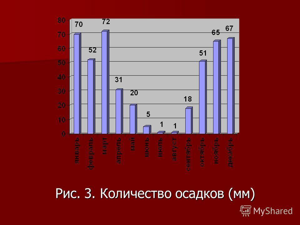 Рис. 3. Количество осадков (мм)