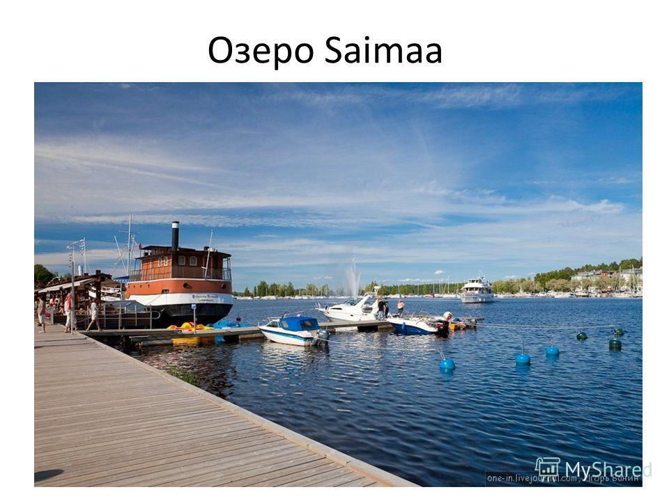 Озеро Saimaa