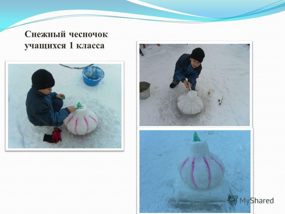 Снежный чесночок учащихся 1 класса