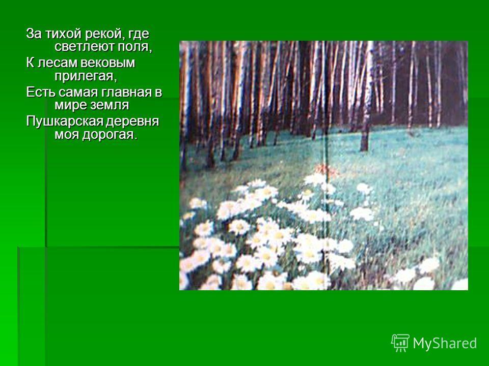 За тихой рекой, где светлеют поля, К лесам вековым прилегая, Есть самая главная в мире земля Пушкарская деревня моя дорогая.