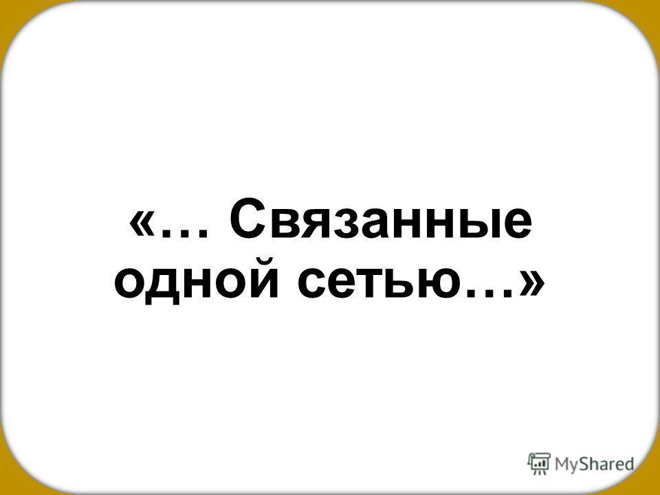 «… Связанные одной сетью…»