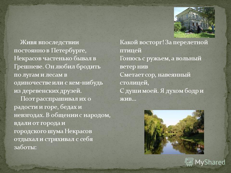 Живя впоследствии постоянно в Петербурге, Некрасов частенько бывал в Грешневе. Он любил бродить по лугам и лесам в одиночестве или с кем-нибудь из деревенских друзей. Поэт расспрашивал их о радости и горе, бедах и невзгодах. В общении с народом, вдал