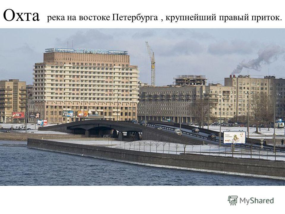 Охта река на востоке Петербурга, крупнейший правый приток.