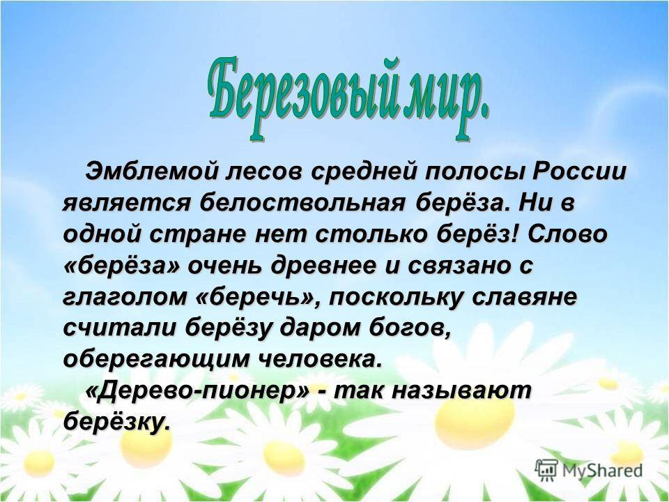Эмблемой лесов средней полосы России является белоствольная берёза. Ни в одной стране нет столько берёз! Слово «берёза» очень древнее и связано с глаголом «беречь», поскольку славяне считали берёзу даром богов, оберегающим человека. Эмблемой лесов ср