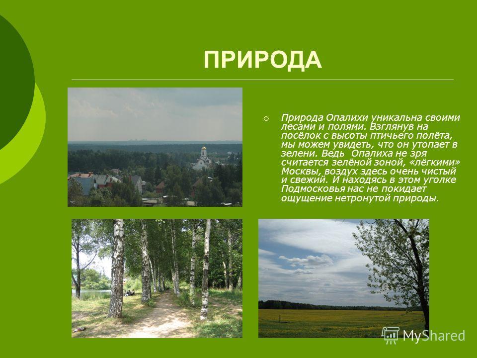 ПРИРОДА Природа Опалихи уникальна своими лесами и полями. Взглянув на посёлок с высоты птичьего полёта, мы можем увидеть, что он утопает в зелени. Ведь Опалиха не зря считается зелёной зоной, «лёгкими» Москвы, воздух здесь очень чистый и свежий. И на