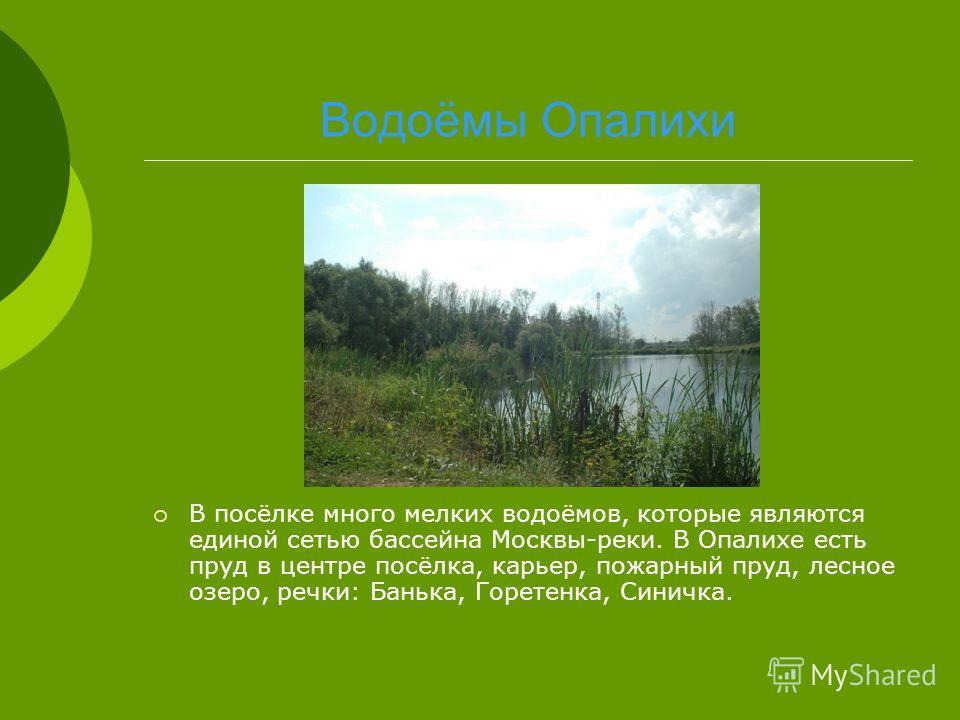 Водоёмы Опалихи В посёлке много мелких водоёмов, которые являются единой сетью бассейна Москвы-реки. В Опалихе есть пруд в центре посёлка, карьер, пожарный пруд, лесное озеро, речки: Банька, Горетенка, Синичка.