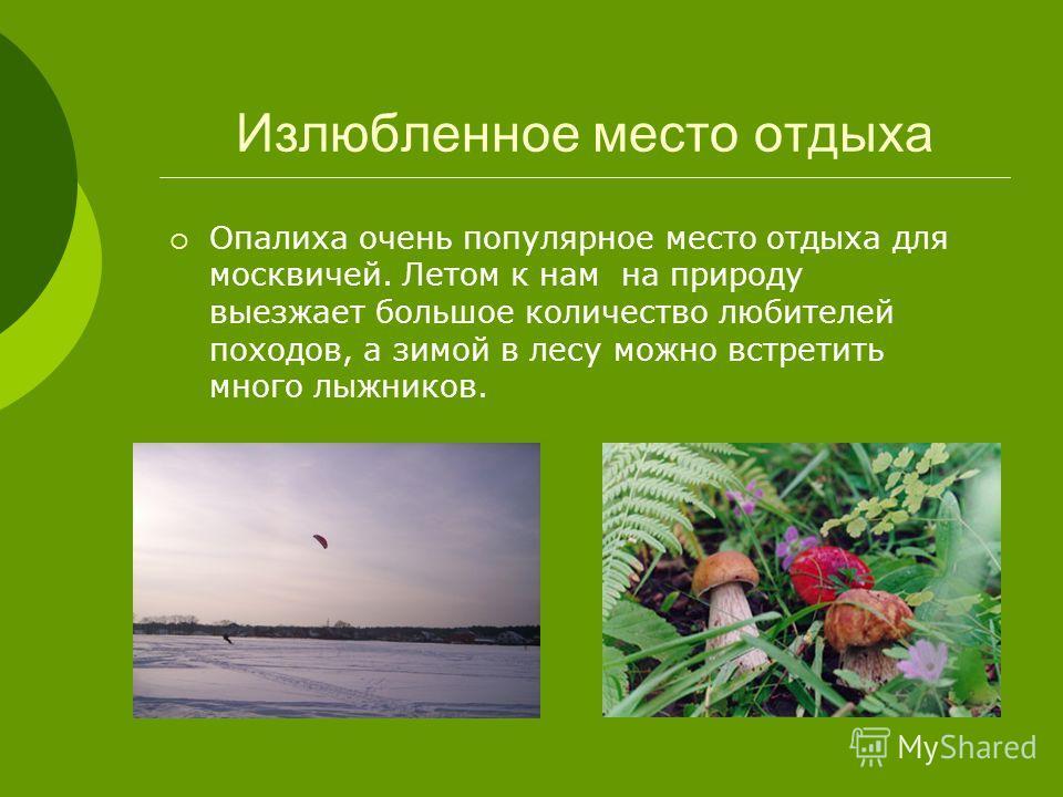 Излюбленное место отдыха Опалиха очень популярное место отдыха для москвичей. Летом к нам на природу выезжает большое количество любителей походов, а зимой в лесу можно встретить много лыжников.