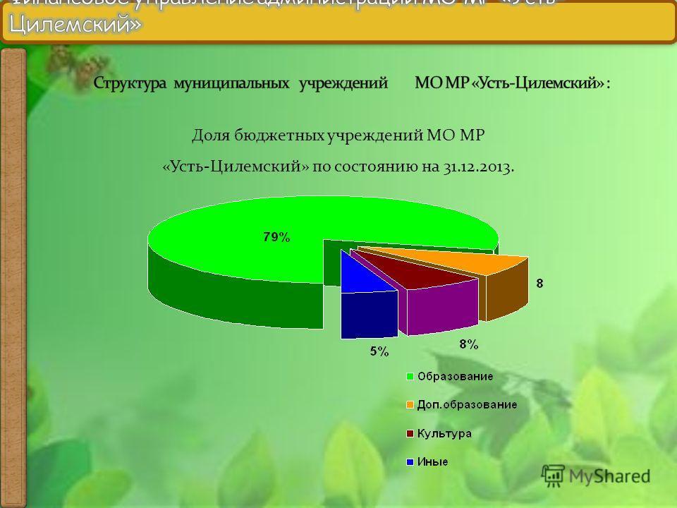 Доля бюджетных учреждений МО МР «Усть-Цилемский» по состоянию на 31.12.2013.