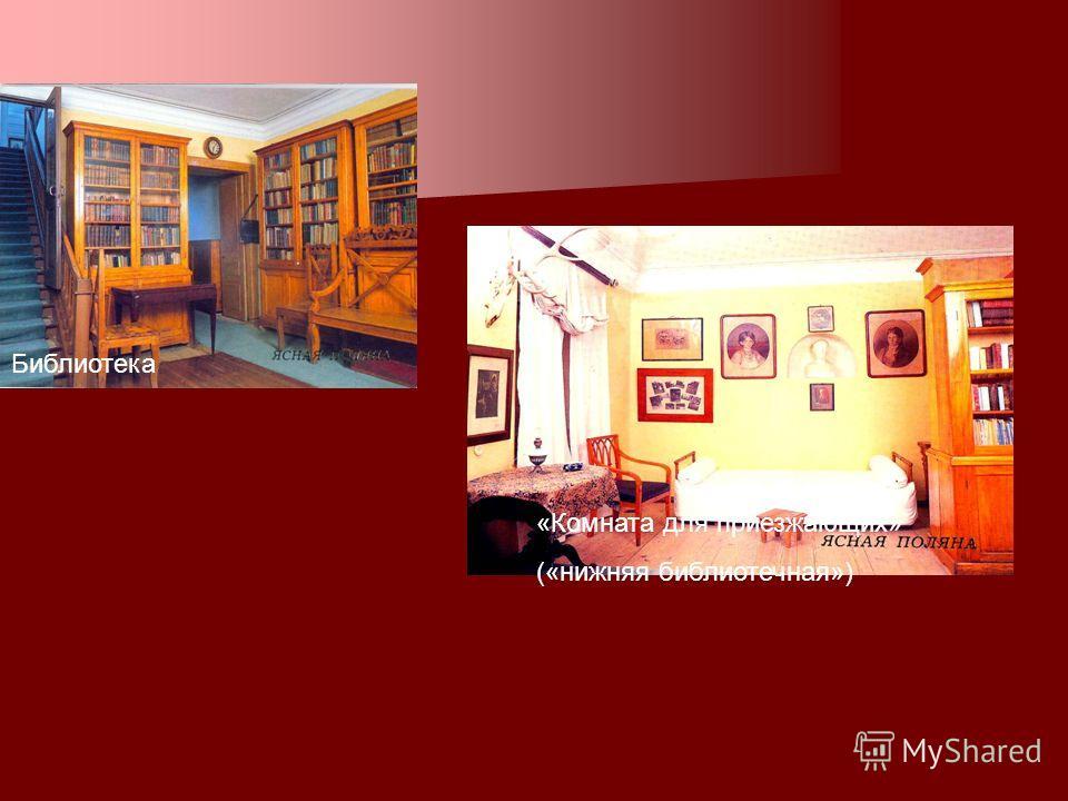 «Комната для приезжающих» («нижняя библиотечная») Библиотека