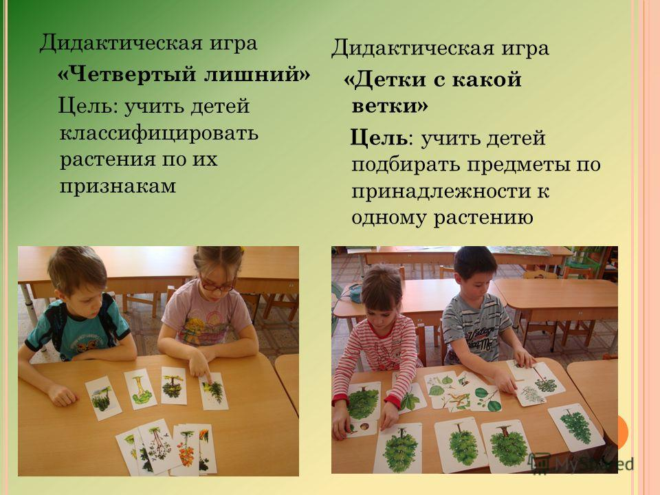 Дидактическая игра «Четвертый лишний» Цель: учить детей классифицировать растения по их признакам Дидактическая игра «Детки с какой ветки» Цель : учить детей подбирать предметы по принадлежности к одному растению