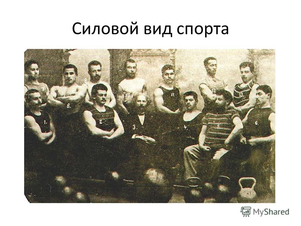 Силовой вид спорта