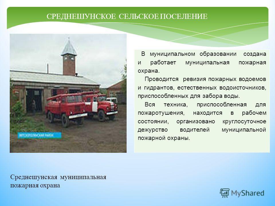 В муниципальном образовании создана и работает муниципальная пожарная охрана. Проводится ревизия пожарных водоемов и гидрантов, естественных водоисточников, приспособленных для забора воды. Вся техника, приспособленная для пожаротушения, находится в