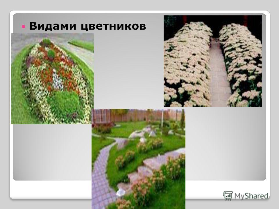 Видами цветников