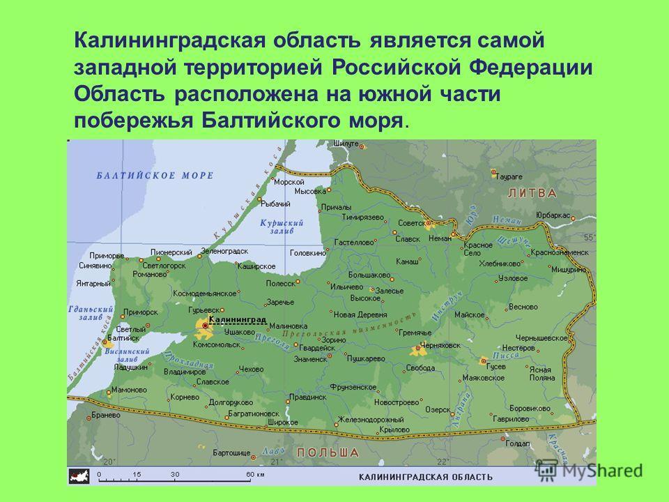 Калининградская область является самой западной территорией Российской Федерации Область расположена на южной части побережья Балтийского моря.