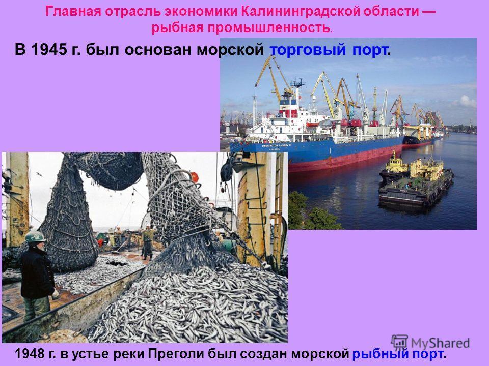 Главная отрасль экономики Калининградской области рыбная промышленность. В 1945 г. был основан морской торговый порт. 1948 г. в устье реки Преголи был создан морской рыбный порт.