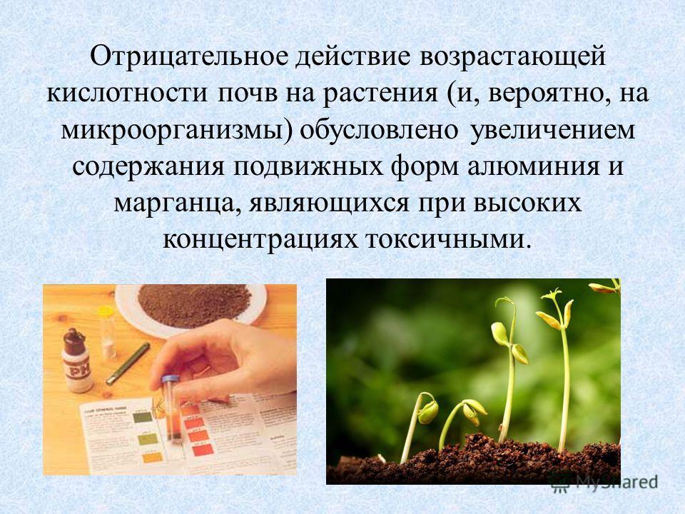 Отрицательное действие возрастающей кислотности почв на растения (и, вероятно, на микроорганизмы) обусловлено увеличением содержания подвижных форм алюминия и марганца, являющихся при высоких концентрациях токсичными.