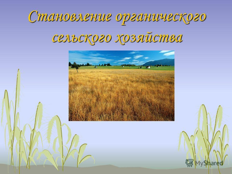 Становление органического сельского хозяйства