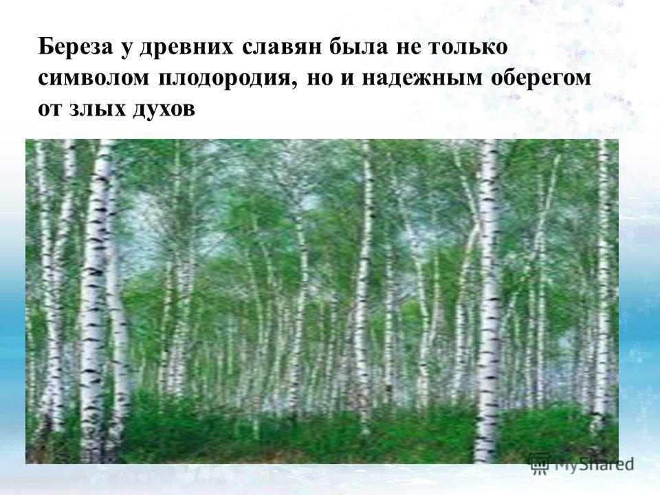 Береза у древних славян была не только символом плодородия, но и надежным оберегом от злых духов