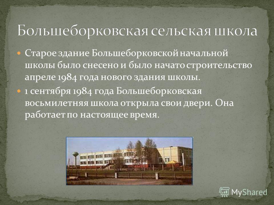 Старое здание Большеборковской начальной школы было снесено и было начато строительство апреле 1984 года нового здания школы. 1 сентября 1984 года Большеборковская восьмилетняя школа открыла свои двери. Она работает по настоящее время.